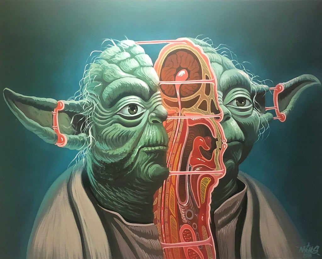 Cross Section of Yoda by NYCHOS