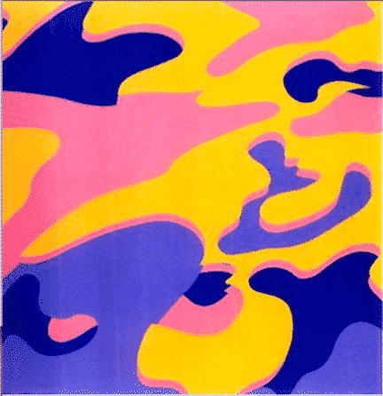 Camouflage 410 By Andy Warhol