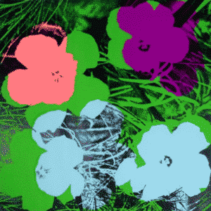 Flower 64 By Andy Warhol