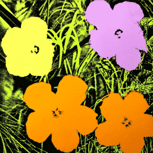 Flower 67 By Andy Warhol