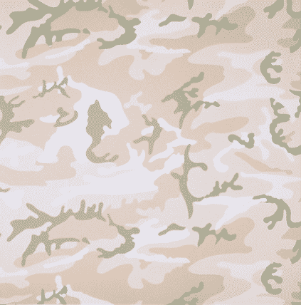 Camo TP (Beige) By Andy Warhol