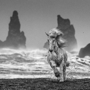 White Horses by David Yarrow
